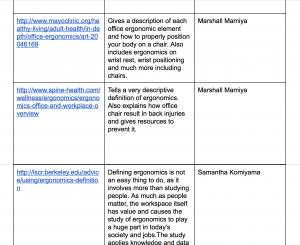 A few of the websites students found and described regarding ergonomics